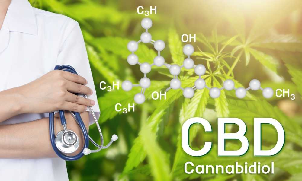 How Long Does CBD Oil Last in Your System