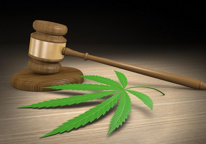 Marijuana Midterm Elections 2018