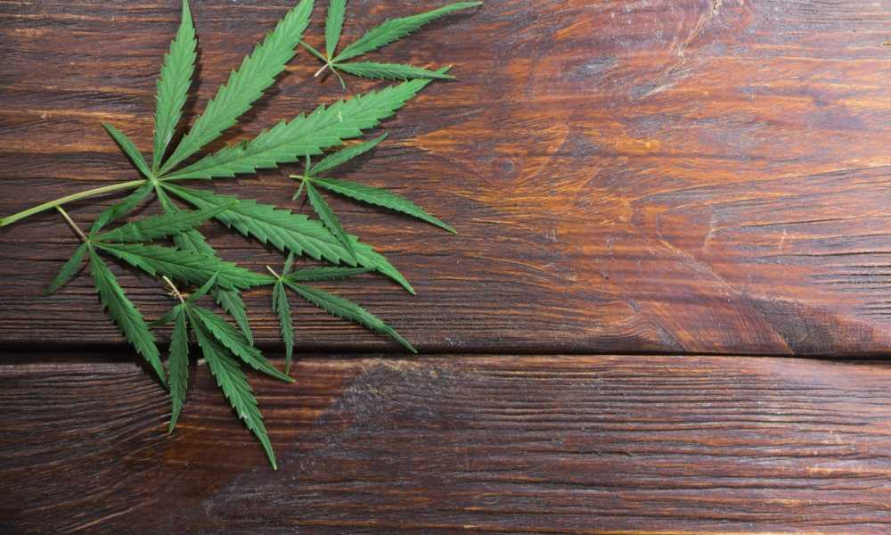 How Medicinal Marijuana Can Relieve Your Symptoms