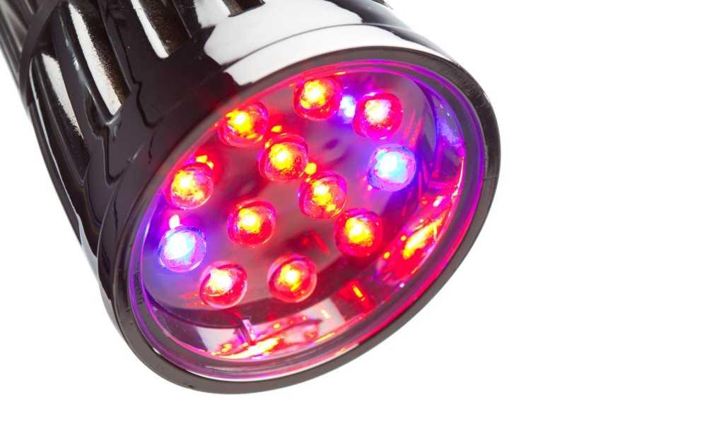 LED Grow Bulb