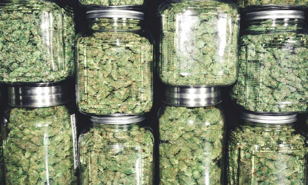 Medicinal Marijuana in Saskatchewan