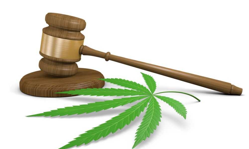 Trying to Pass Marijuana Legislation in the U. S. Virgin Islands