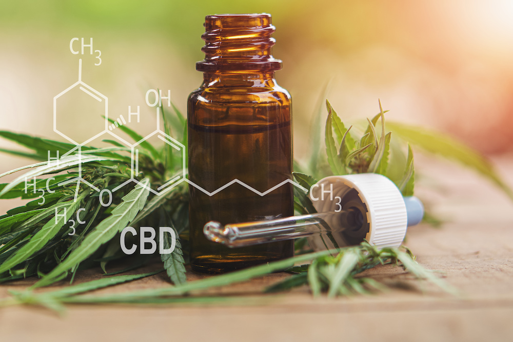 CBD oil extracts in a bottle