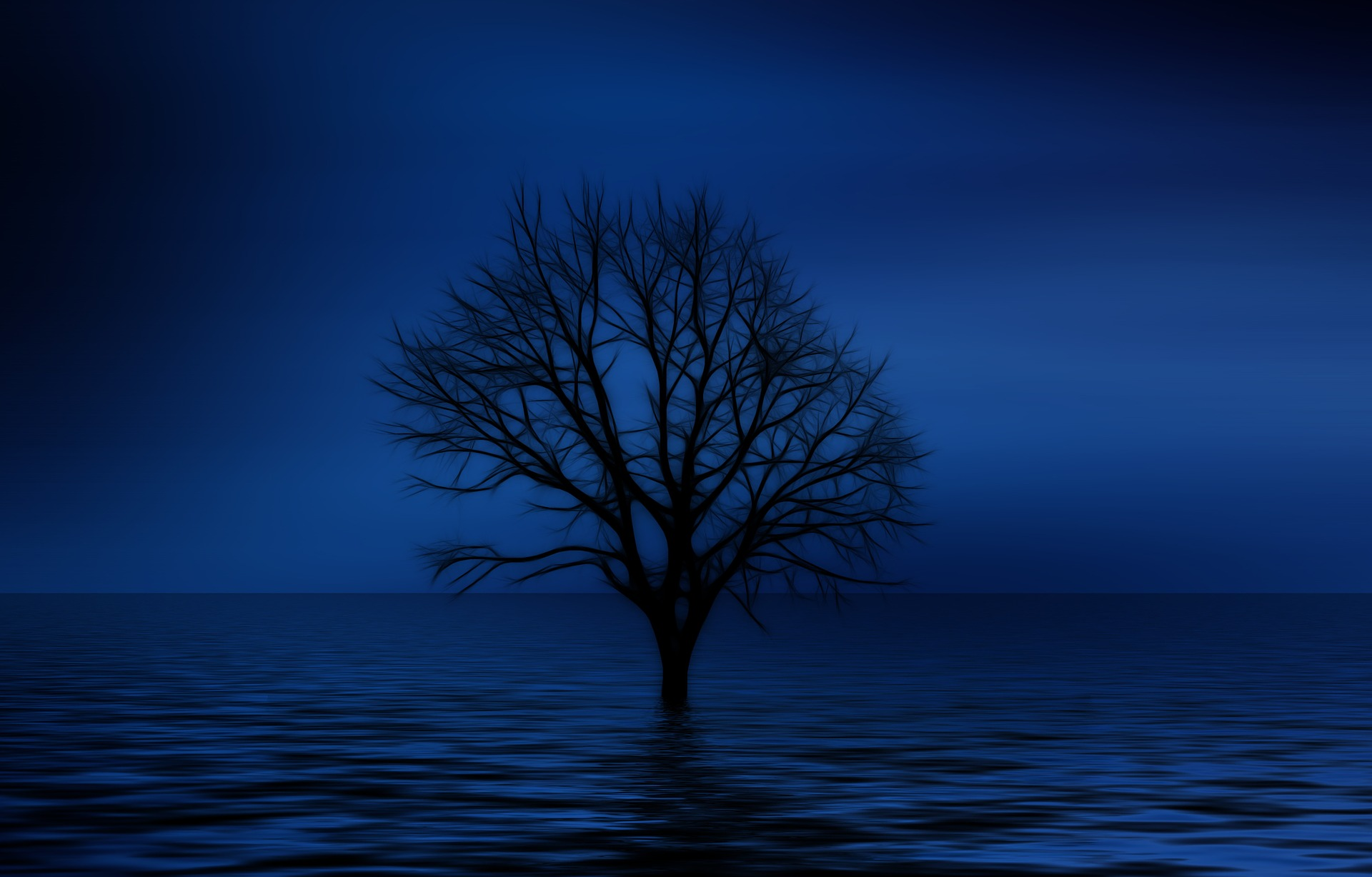 Tree of Isolation